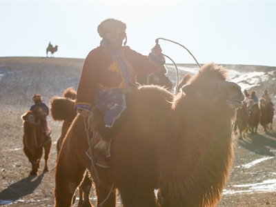 Day 9: Gobi Cold Camel Expedition