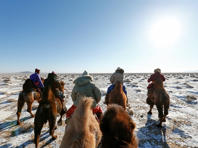 Day 5: Gobi Cold Camel Expedition