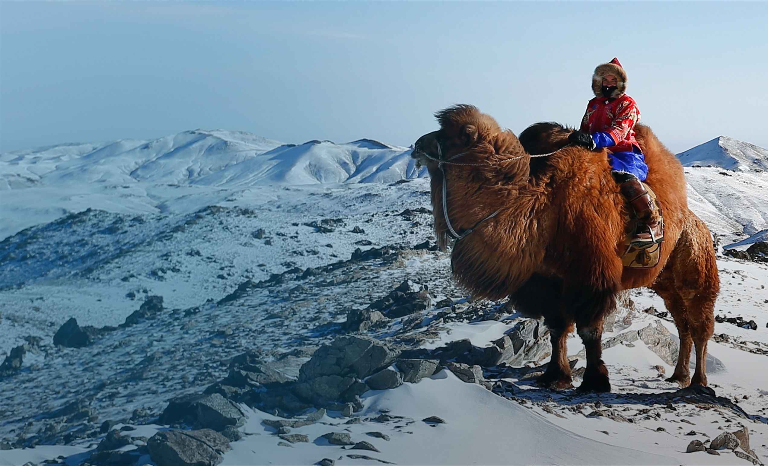Cold Camel Expedition Follow Kelly Wilsons' adventures on her wild ride across the Gobi Desert